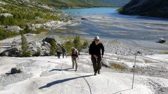 Wanderung zum Nigardsbreen