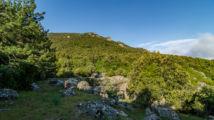 Stellplatz Monte Limbara